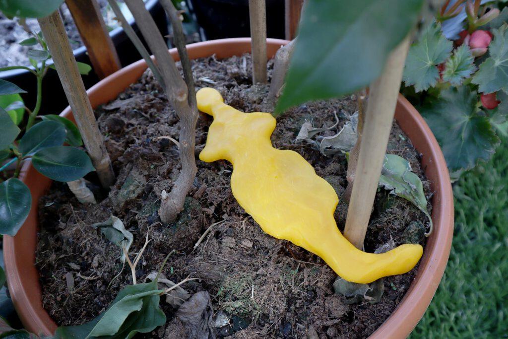 Queer AI: Puutarhan työpajassa muovailtu luomiskertomuksen omakuva. Keltainen litteä lisko.